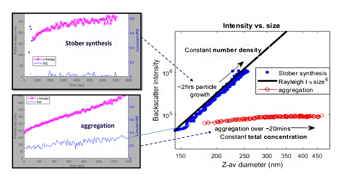 Real-Time Monitoring of Nanoparticle Growth